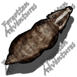 Giant_Badger_Medium_Beast_02_Watermark