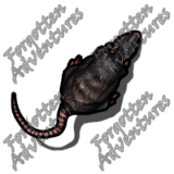 Giant_Rat_Small_Beast_01_Watermark