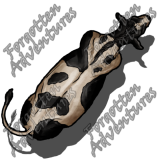 Cow_Large_Beast_01_Watermark