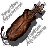 Cow_Large_Beast_04_Watermark