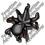 Octopus_Small_Beast_06_Watermark