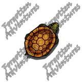 Turtle_Tiny_Beast_01_Watermark