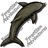 Dolphin_Medium_Beast_04_Watermark