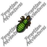 Neogi_Hatchling_Tiny_Aberration_02_Watermark