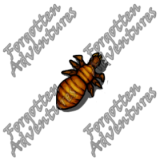 Neogi_Hatchling_Tiny_Aberration_04_Watermark
