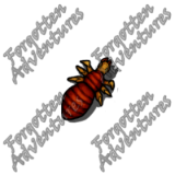 Neogi_Hatchling_Tiny_Aberration_05_Watermark