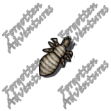 Neogi_Hatchling_Tiny_Aberration_07_Watermark