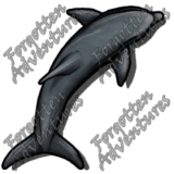 Dolphin_Medium_Beast_03_Watermark