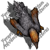 Axe_Beak_Large_Beast_12_Watermark