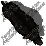 Boar_Medium_Beast_04_Watermark