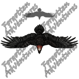 Giant_Bearded_Vulture_Large_Beast_04_Watermark