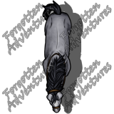 Draft_Horse_Large_Beast_18_Watermark