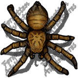 Giant_Wolf_Spider_Medium_Beast_01_Watermark