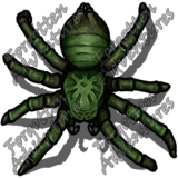 Giant_Wolf_Spider_Medium_Beast_04_Watermark