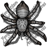 Giant_Wolf_Spider_Medium_Beast_10_Watermark