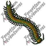 Giant_Centipede_Small_Beast_02_Watermark