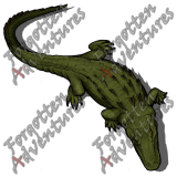 Alligator_Large_Beast_05_Watermark