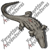 Alligator_Large_Beast_09_Watermark