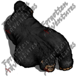 Ape_Medium_Beast_03_Watermark
