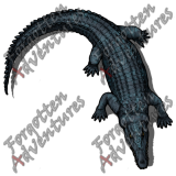 Crocodile_Large_Beast_03_Watermark