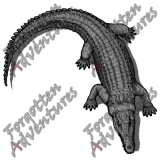 Crocodile_Large_Beast_05_Watermark