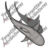 Reef_Shark_Medium_Beast_05_Watermark