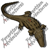 Alligator_Large_Beast_01_Watermark