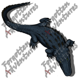 Alligator_Large_Beast_07_Watermark