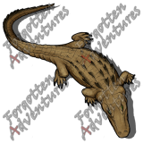 Alligator_Large_Beast_08_Watermark