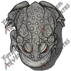 Giant_Toad_Large_Beast_07_Watermark