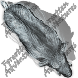 Boar_Medium_Spirit_04-boarhogpig_Watermark