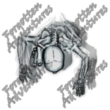 Skeleton_Medium_Spirit_04-Skeletonskeletalremains_Watermark
