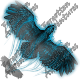 Hawk_Tiny_Spirit_01_Watermark