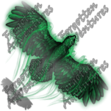 Hawk_Tiny_Spirit_02_Watermark