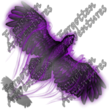 Hawk_Tiny_Spirit_03_Watermark