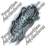 Lynx_Small_Spirit_03_Watermark