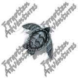 Sea_Turtle_Medium_Spirit_02_Watermark