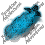 Sheep_Medium_Spirit_01_Watermark