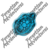 Turtle_Tiny_Spirit_01_Watermark