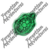 Turtle_Tiny_Spirit_04_Watermark
